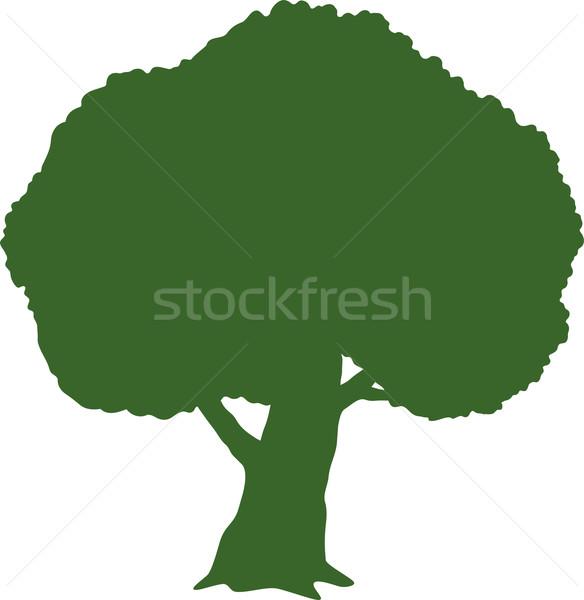 Tree (Silhouette) Stock photo © jara3000