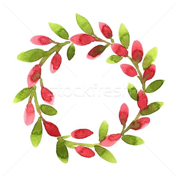 Coroa rosa aquarela ilustração natureza folha Foto stock © jara3000