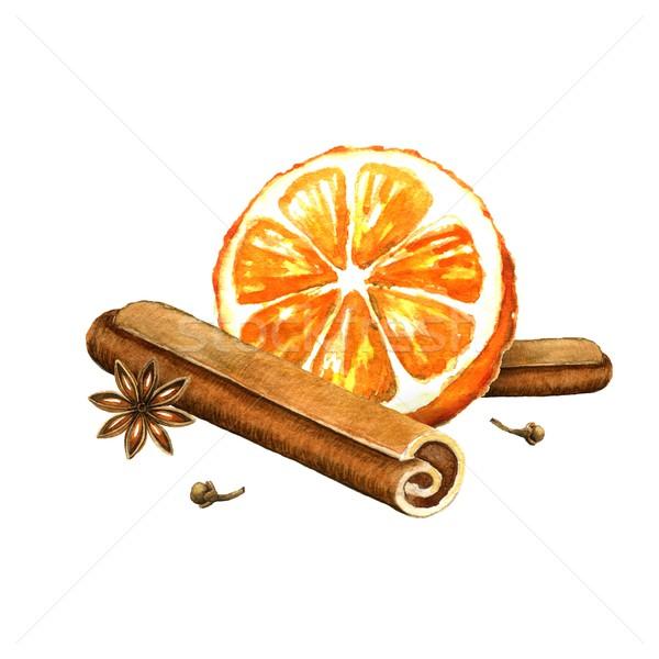 Szelet narancs fahéj csillag ánizs vízfesték Stock fotó © jara3000