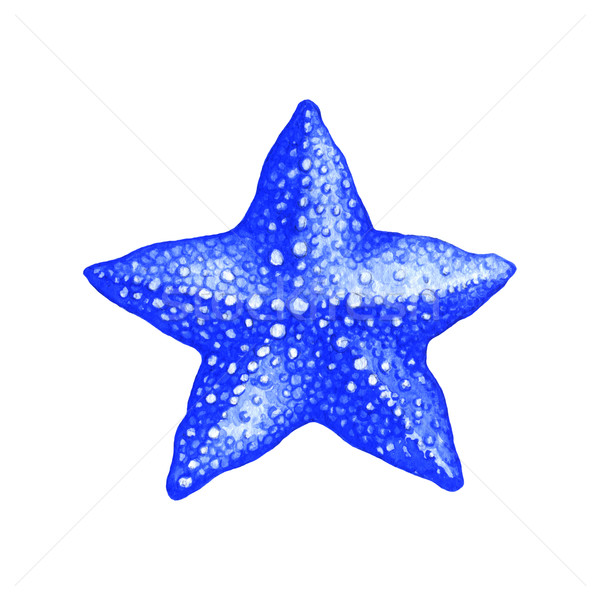 Starfish couleur pour aquarelle illustration blanche nature animaux Photo stock © jara3000