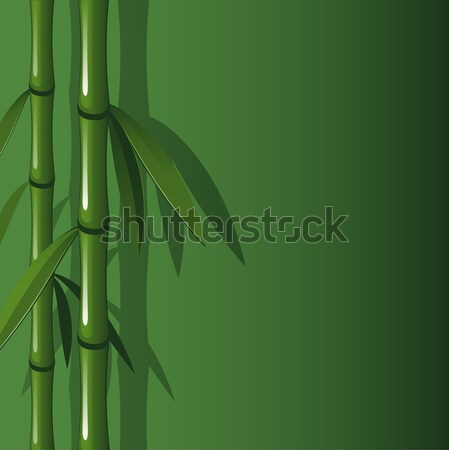Vector background with bamboo Stock photo © jara3000
