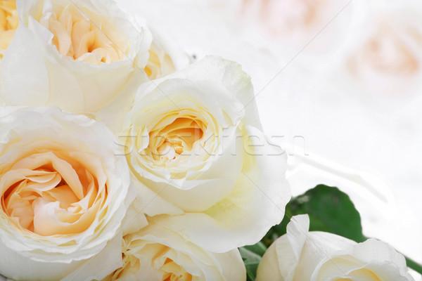 White roses with yellow centers Stock photo © jarenwicklund