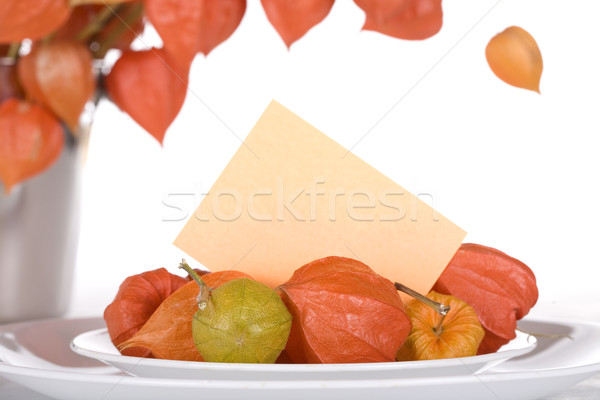 Japanese lantern flowers on plate with blank name card Stock photo © jarenwicklund