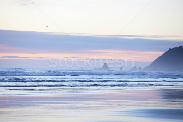 Colorful pastel hues in sky over Cannon Beach, Oregon Stock photo © jarenwicklund