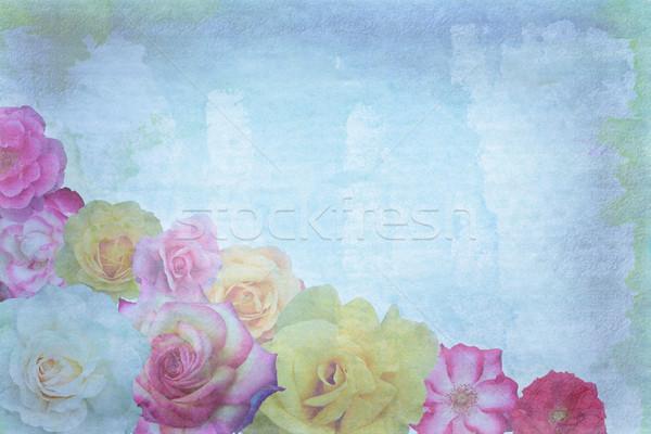 Roses on grunge background Stock photo © jarenwicklund