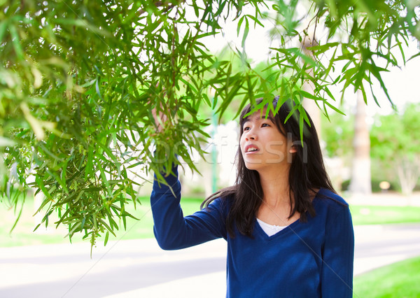 Young teen girl outdoors, reaching up to touch leaves on tree Stock photo © jarenwicklund