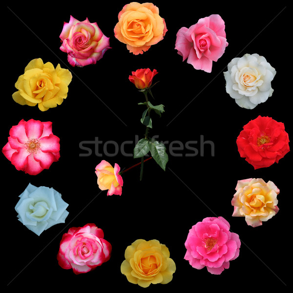 Clock face made of roses Stock photo © jarenwicklund