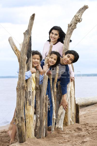 Vier Geschwister Seeufer Sommer stehen Treibholz Stock foto © jarenwicklund