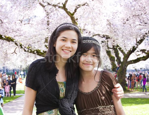 Twee meisjes permanente groot bloei kers Stockfoto © jarenwicklund