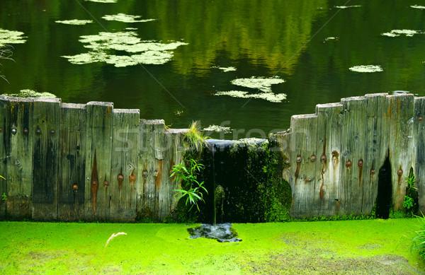 Csendes tavacska fából készült Stock fotó © jarenwicklund