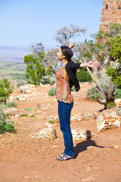 Biracial teen girl raising arms in praise at the Grand Canyon Stock photo © jarenwicklund