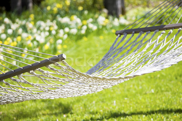 Hammock out on sunny yard near flower garden Stock photo © jarenwicklund
