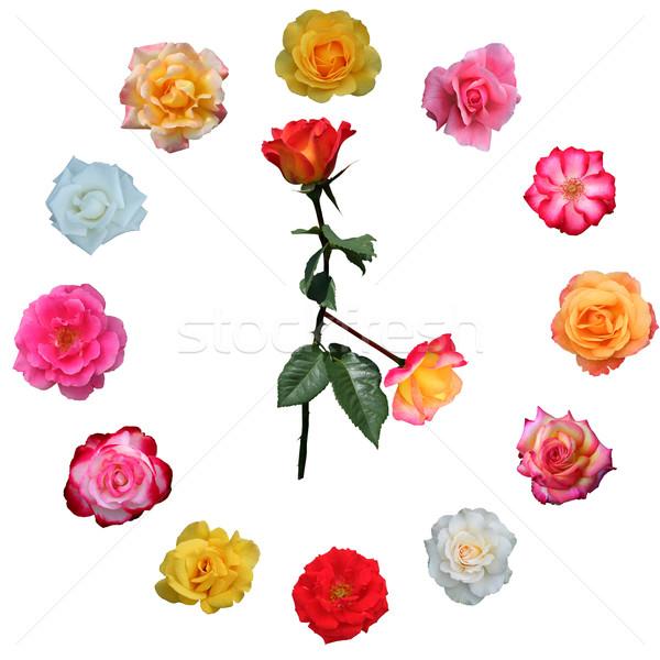 Clock face made of roses Stock photo © jarenwicklund
