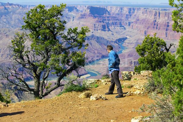 Kafkas adam kırk yaşlarında bakıyor uçurum Grand Canyon Stok fotoğraf © jarenwicklund