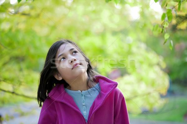 若い女の子 紅葉 少女 自然 子供 ストックフォト © jarenwicklund