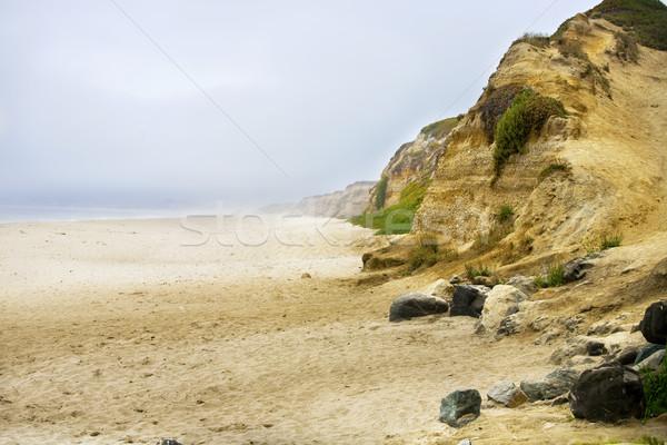 Misty sandy beach along the Pacific Ocean cliffs Stock photo © jarenwicklund