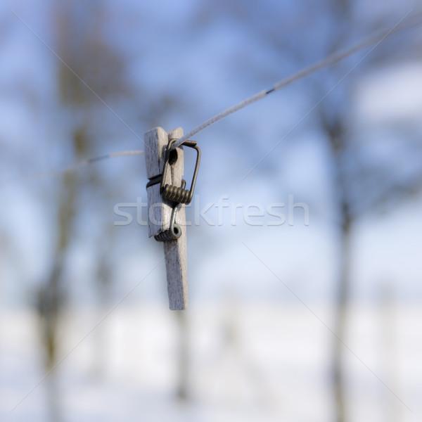 Stockfoto: Gebroken · wasknijper · draad · focus · voorgrond · voorjaar