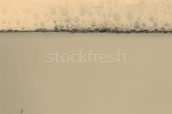 Beer with foam in the glass Stock photo © jarin13