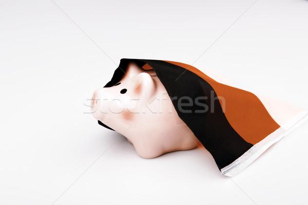 pig money box and Germany flag Stock photo © jarin13