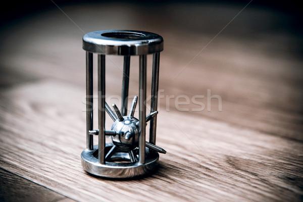еж клетке чешский владелец древесины металл Сток-фото © jarin13