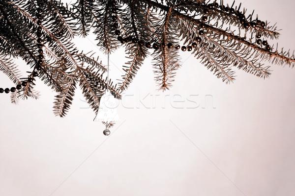 Christmas dekoracji oddziału pierścień drzewo charakter Zdjęcia stock © jarin13
