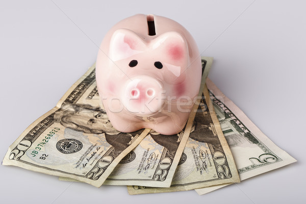 pig bank on dollar banknotes Stock photo © jarin13