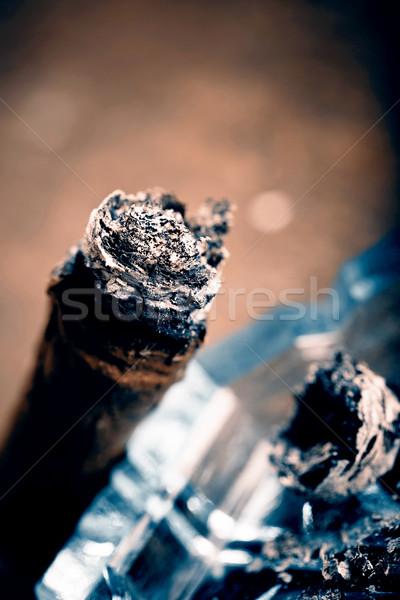 Costoso sigaro mano foglia fumo Foto d'archivio © jarin13