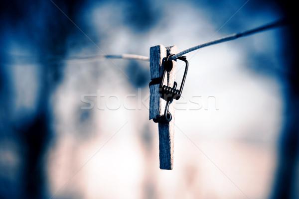 Quebrado prendedor de roupa arame foco primeiro plano árvore Foto stock © jarin13