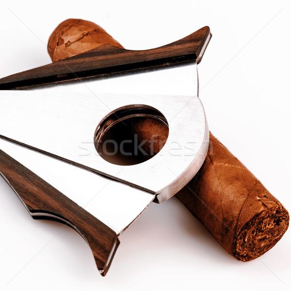 Szivar fehér drága levél egészség füst Stock fotó © jarin13