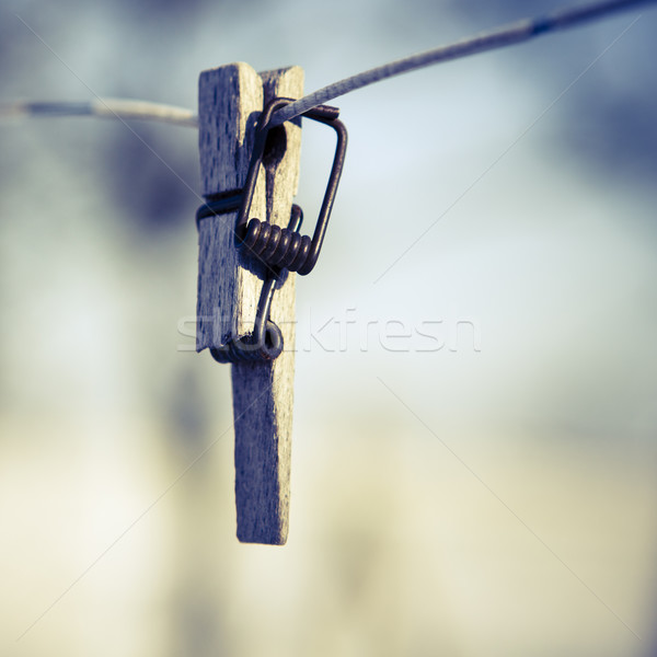 Podziale clothespin drutu skupić pierwszy plan wiosną Zdjęcia stock © jarin13