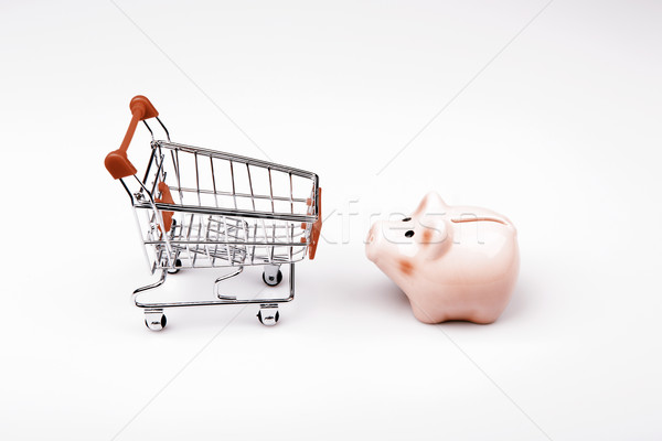 shopping cart versus pig money box Stock photo © jarin13