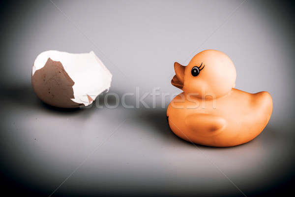 Yellow small plastic duck with egg isolated on a white backgroun Stock photo © jarin13