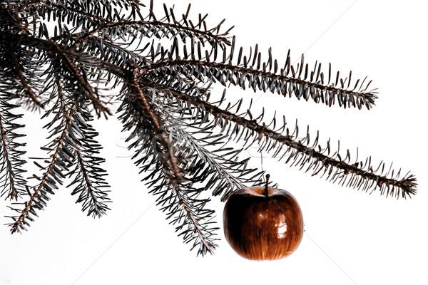Natal decoração maçã vermelha verde ramo árvore Foto stock © jarin13