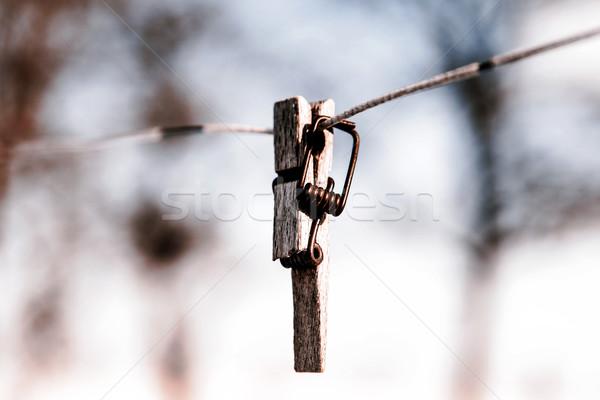 壊れた 洗濯挟み 線 フォーカス フォアグラウンド ツリー ストックフォト © jarin13