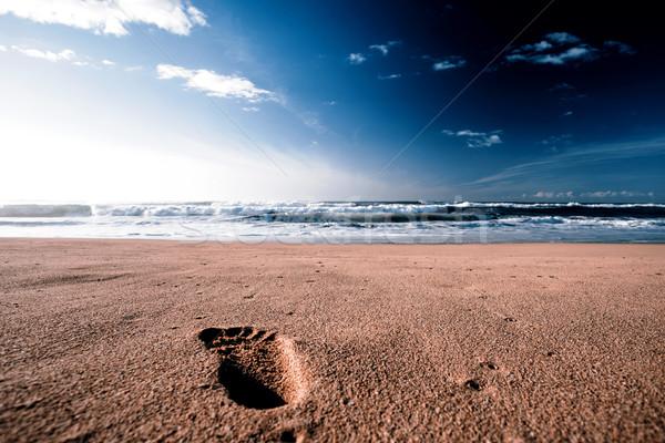 Mooie strand zonnige Hawaii water zon Stockfoto © jarin13