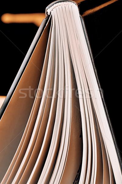 Closeup of an open book Stock photo © jarin13
