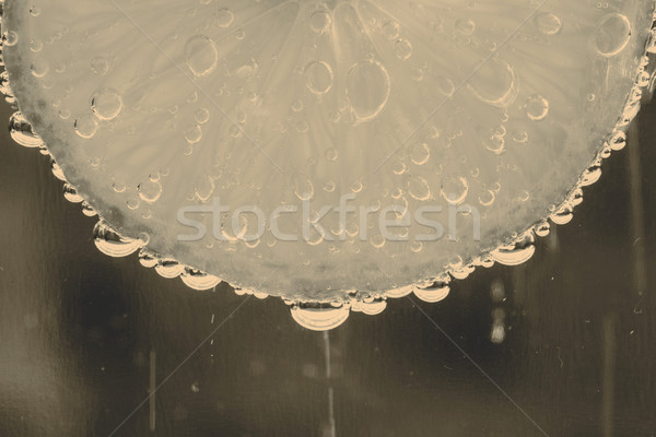 Citrus buborékok gyönyörű friss szelet víz Stock fotó © jarin13