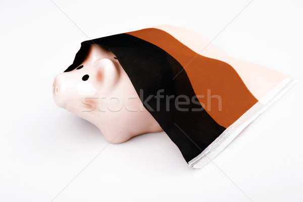 pig money box and Germany flag Stock photo © jarin13