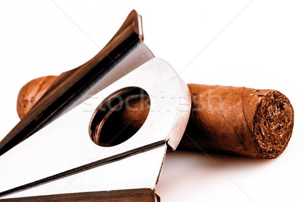 Szivar fehér drága füst retro luxus Stock fotó © jarin13