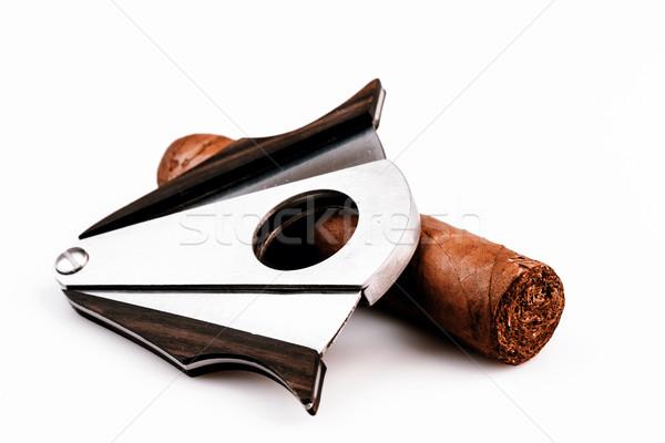 シガー 白 高価な 葉 健康 煙 ストックフォト © jarin13