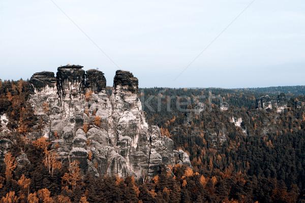 Bastei rocks Stock photo © jarin13
