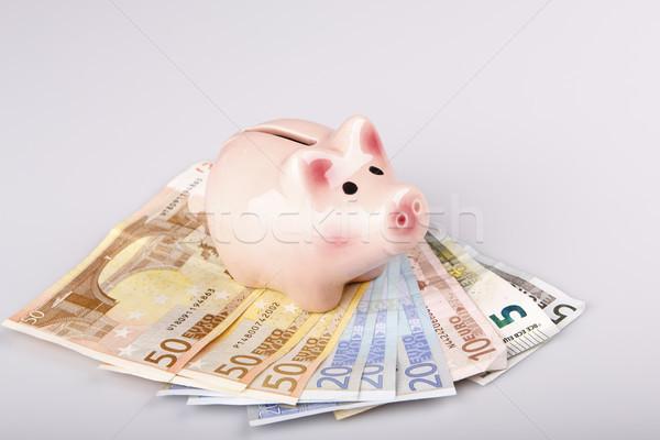 Porco banco euro notas dinheiro caixa Foto stock © jarin13