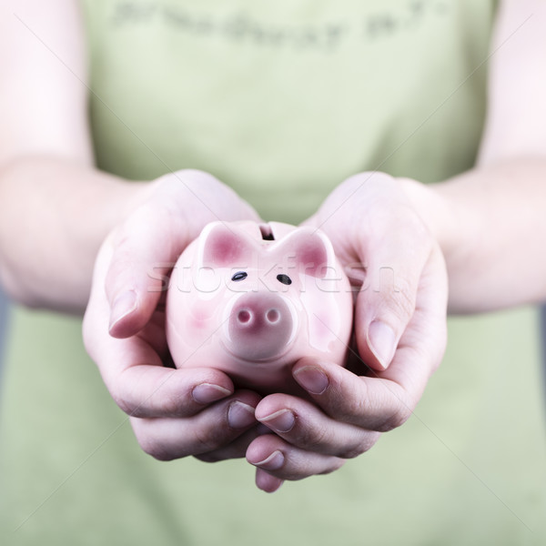 pig money box in woman hand Stock photo © jarin13