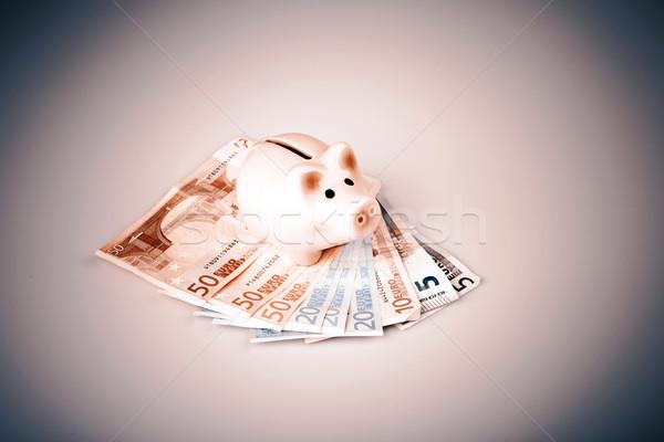 Disznó bank Euro bankjegyek pénz doboz Stock fotó © jarin13