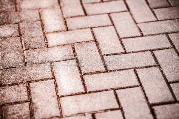interlocking pavement Stock photo © jarin13