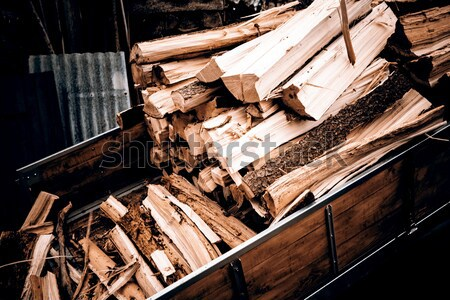 logging tractor Stock photo © jarin13