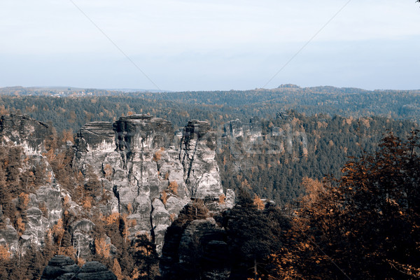 Rotsen mooie Duitsland boom stad bos Stockfoto © jarin13
