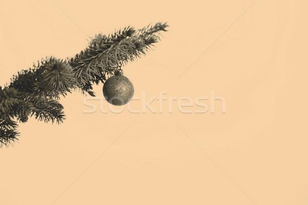Karácsonyfa dekoráció arany villanykörte fa természet Stock fotó © jarin13