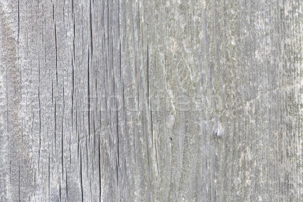 Belo cinza branco textura possível Foto stock © jarin13
