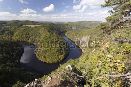 Meander of Vltava river Stock photo © jarin13